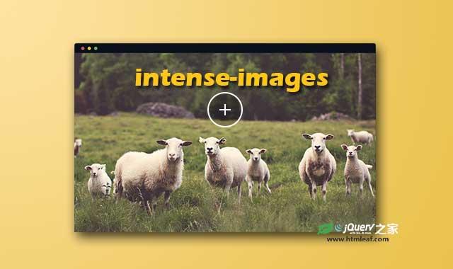超大图片全屏动态展示js插件