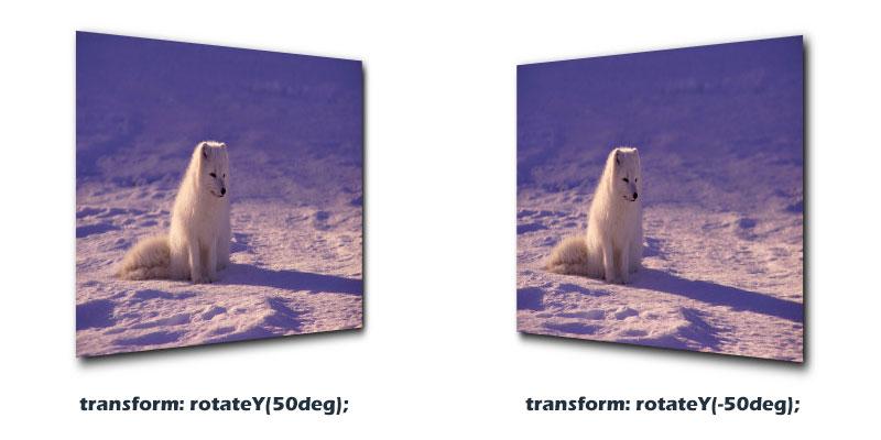 图片沿Y轴旋转的效果