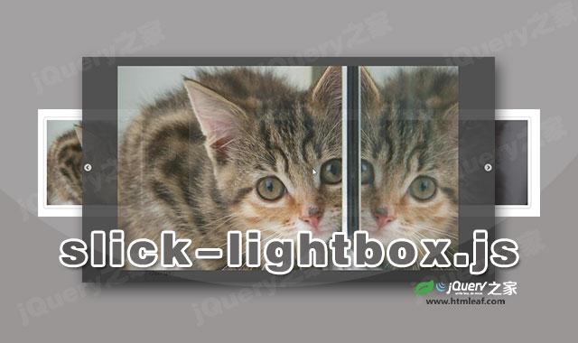 jquery响应式弹出层lightbox插件slick-lightbox.js