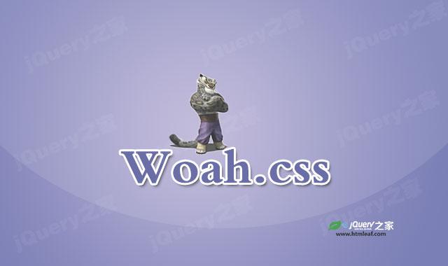 超疯狂CSS3动画库Woah.css