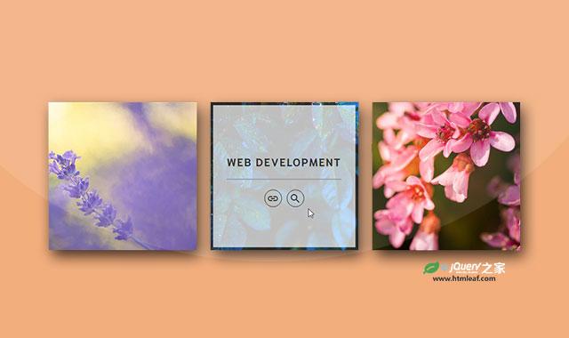 5种CSS3鼠标悬停图片动画特效